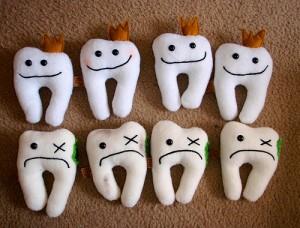 Spartul semintelor toceste dintii din fata.