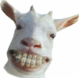 animal.aparat.dentar